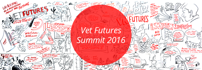 Read about the Vet Futures Summit