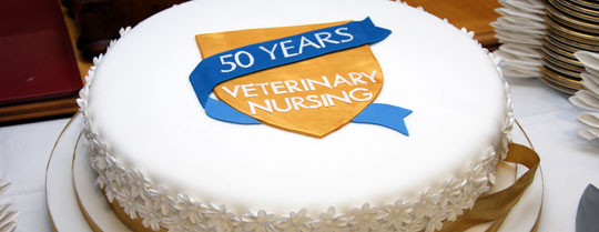 VN 50th anniversary cake