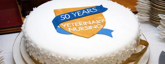 VN 50th anniversary cake