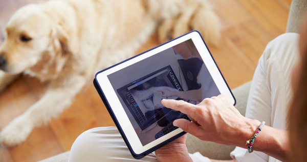 Dog owner with tablet