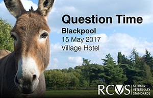 Donkey in a field - text for event