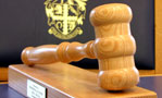 disciplinary-committee-dismisses-case-against-stourbridge-vet