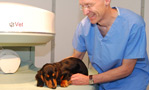 new-middle-tier-accreditation-for-veterinary-surgeons-launched