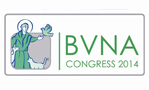 declarations-and-q-and-a-session-at-bvna-congress