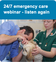 24/7 emergency care webinar - listen again