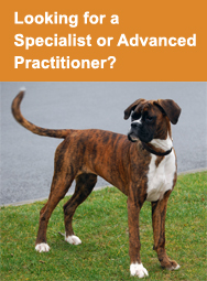 Looking for a Specialist or Advanced Practitioner?