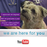 Watch our video - We're here for you
