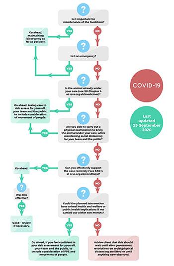 Coronavirus practice flow chart