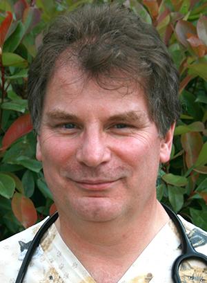 Dr Kit Sturgess, RCVS Council election candidate 2021