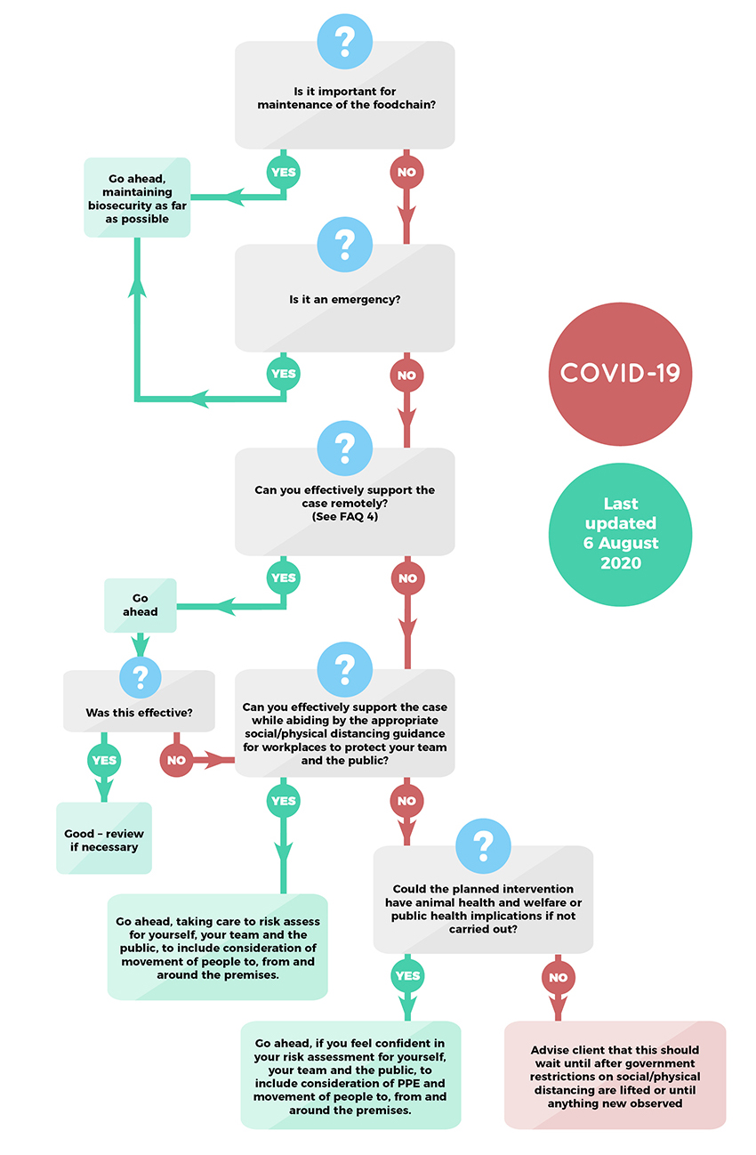 Coronavirus practice flow chart (6 August 2020)