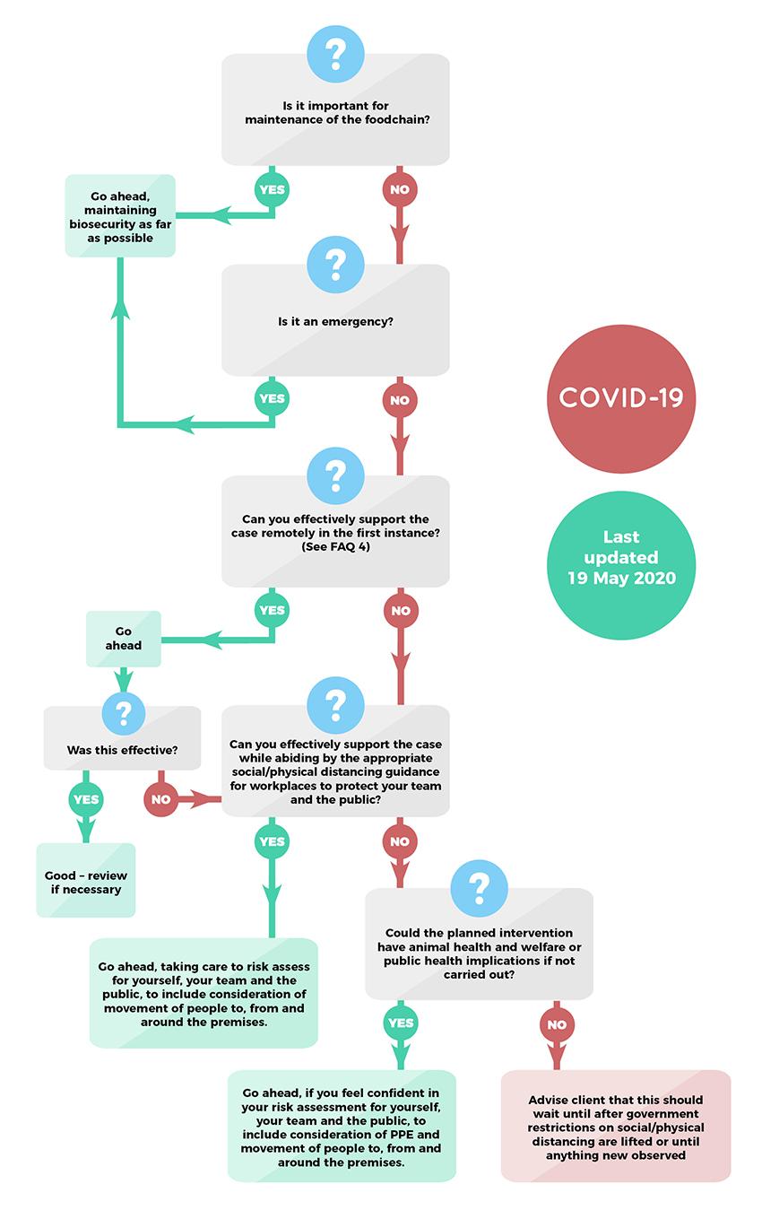 Coronavirus practice flow chart (19 May 2020)