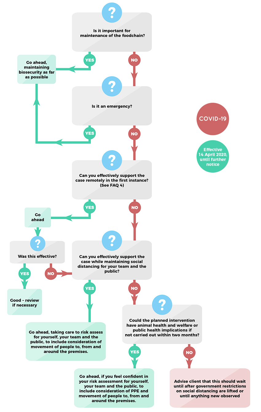 Flowchart - Guidance for clinical practices during COVID-19: 'Can I do it?'