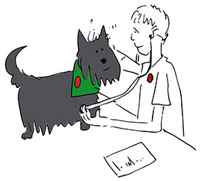 Cartoon of VN examining dog