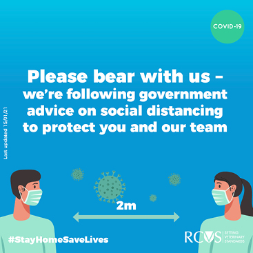 Instagram card - Please bear with us