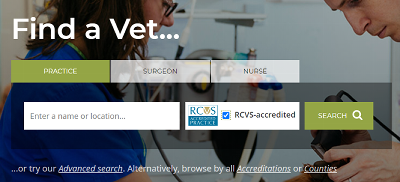 Image depicting a search box on Find a Vet