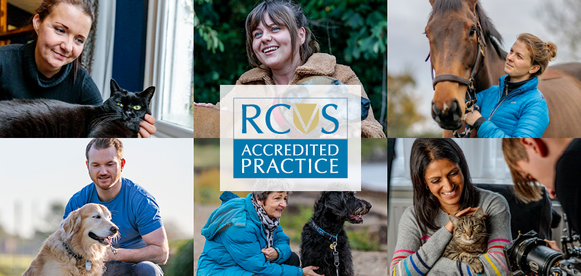 Practice Standards Scheme composite image with logo