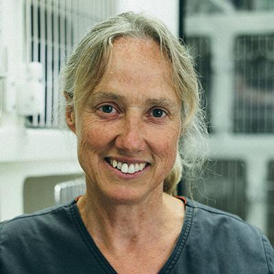 Sarah Colegrave