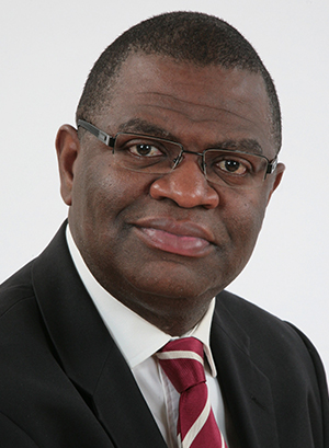 Victor Olowe, Audit & Risk Committee member