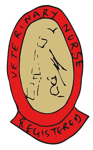 RVN badge