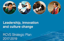 leadership-innovation-and-culture-change-focus-for-three-year