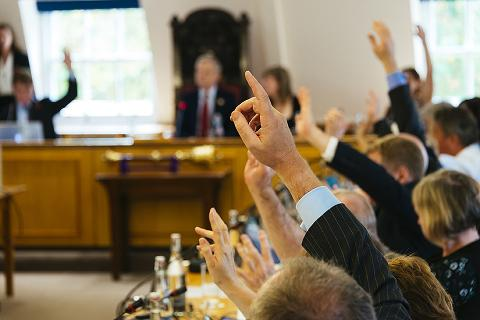 Raised hands at an RCVS Council meeting
