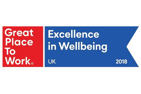 Great Place to Work Excellence in Wellbeing logo