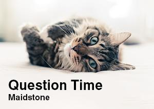 Question Time - Maidstone