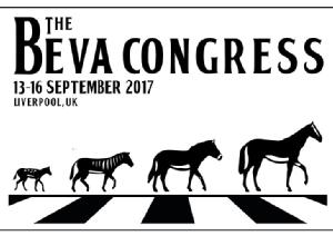 Practice Standards Scheme Surgeries at BEVA Congress