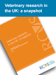 Veterinary research in the UK: a snapshot