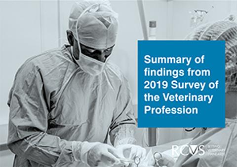 Summary of findings from the 2019 Survey of the Veterinary Profession