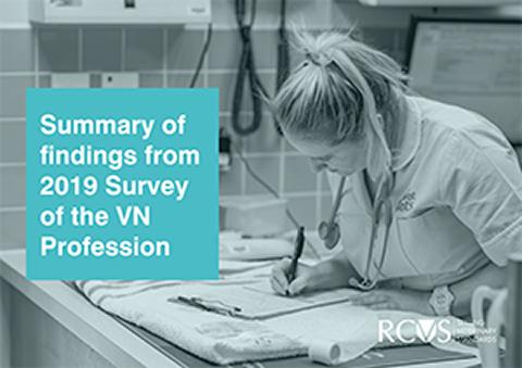 Summary of findings from the 2019 Survey of the Veterinary Nursing Profession